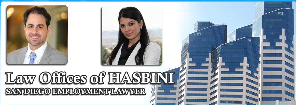 About San Diego Employment Lawyer